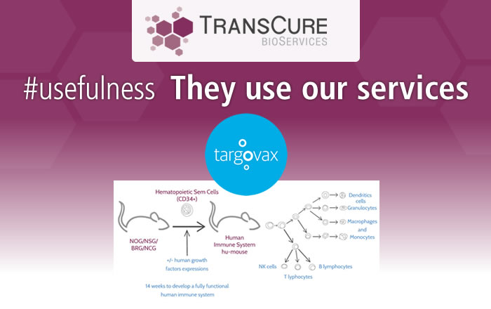 actu-tcs-20181219_TransCure-bioServices-involved-in-Targovaxs-results